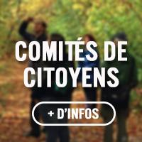 Éco-quartier - Comités