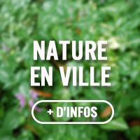 bouton_nature
