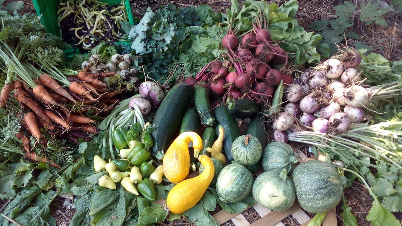 image de divers légumes
